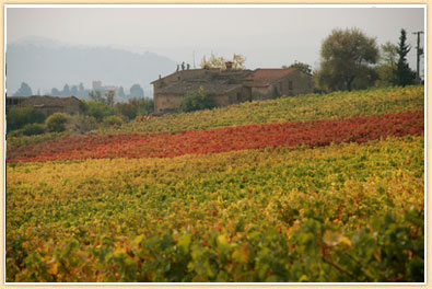 fall-in-tuscany1